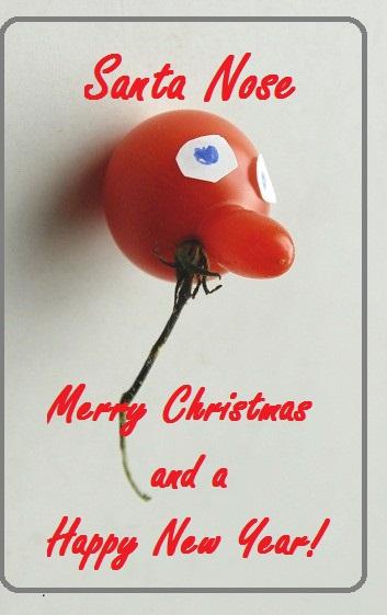 Ein Weihnachtsgruß aus der Welt von Schattenblau